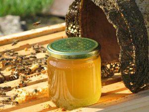 Honig Gold der Wachau Honigwerkstatt