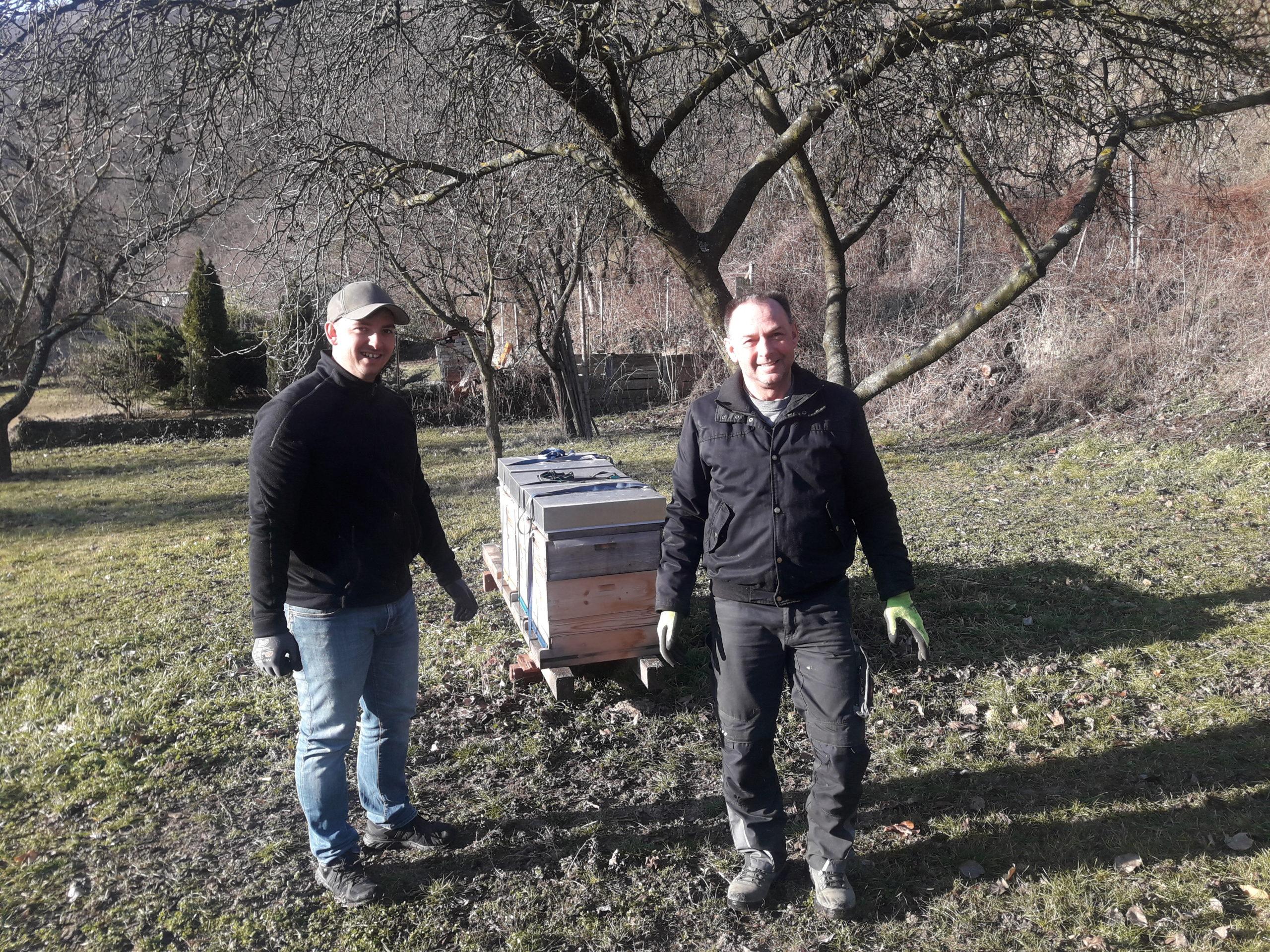 Bienenpate Heuriger Ilkerl